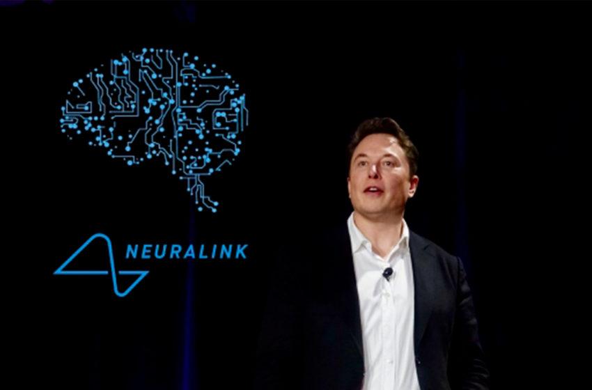 Neuralink e la scimmia che gioca ai video games con il suo cervello