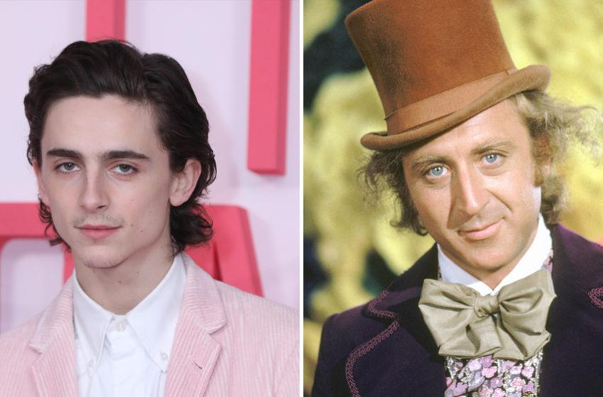 Willy Wonka – il remake sarà affidato a Timothèe Chalamet