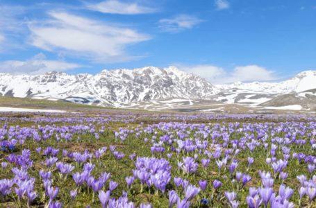 Vacanze in montagna: le migliori destinazioni
